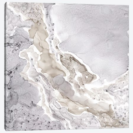 Silver & Grey Mineral Abstract Canvas Print #TRE83} by Tara Reed Canvas Art