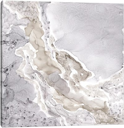 Silver & Grey Mineral Abstract Canvas Art Print