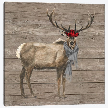 Warm In The Wilderness Deer Canvas Print #TRE85} by Tara Reed Art Print