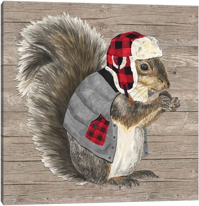 Warm In The Wilderness Squirrel Canvas Art Print