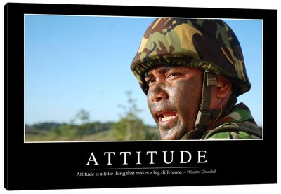 Attitude II Canvas Art Print