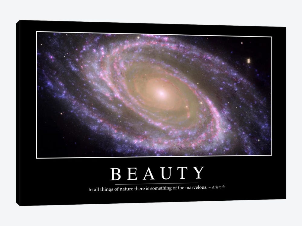 Beauty II 1-piece Canvas Wall Art
