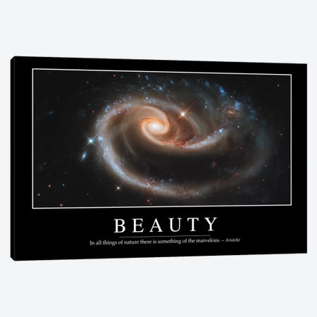Beauty III Canvas Print #TRK1079} by Stocktrek Images Art Print