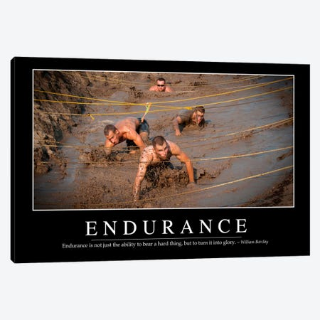 Endurance Canvas Print #TRK1097} by Stocktrek Images Canvas Wall Art