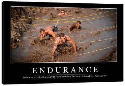 Endurance Canvas Art Print