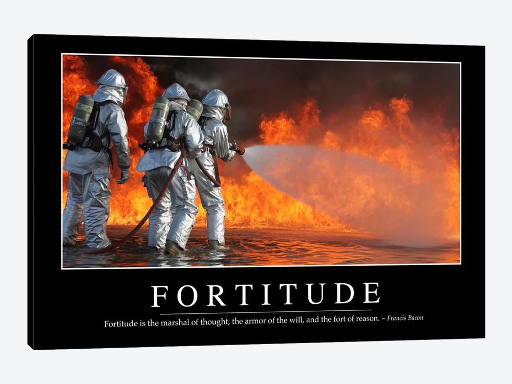 Fortitude by Stocktrek Images 1-piece Canvas Art