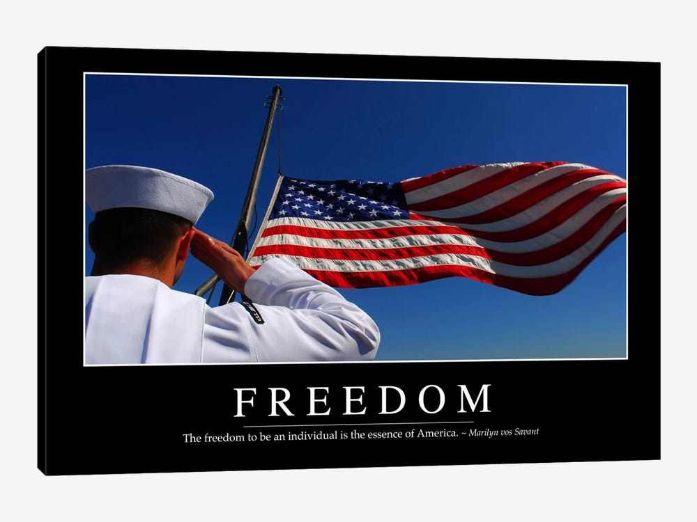 Freedom II by Stocktrek Images 1-piece Canvas Art