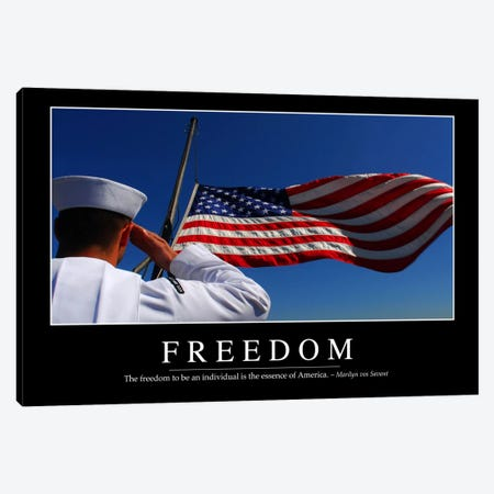 Freedom II Canvas Print #TRK1104} by Stocktrek Images Canvas Wall Art