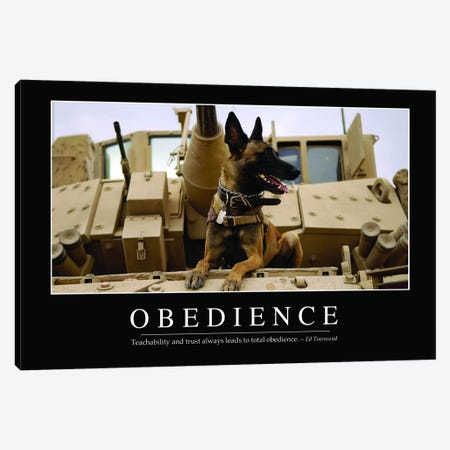 Obedience Canvas Print #TRK1125} by Stocktrek Images Canvas Wall Art