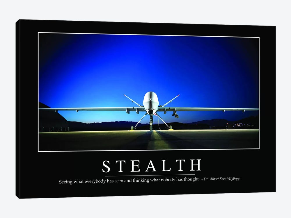 Stealth 1-piece Art Print