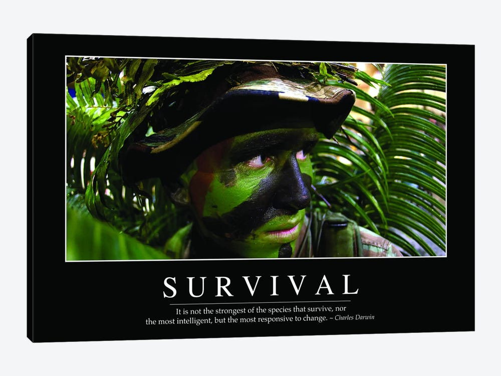 Survival 1-piece Canvas Artwork