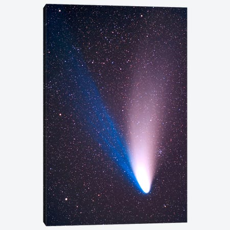 Comet Hale-Bopp, April 7, 1997 Canvas Print #TRK1165} by Alan Dyer Canvas Wall Art