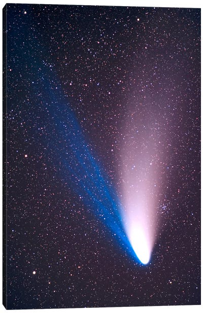 Comet Hale-Bopp, April 7, 1997 Canvas Art Print
