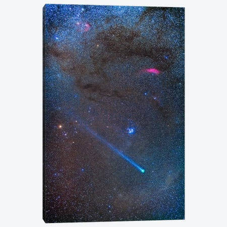 Comet Lovejoy's Long Ion Tail In Taurus Canvas Print #TRK1166} by Alan Dyer Canvas Wall Art