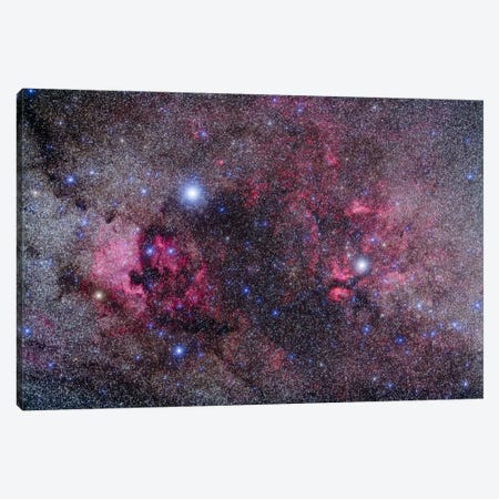 Nebulosity In Cygnus Canvas Print #TRK1169} by Alan Dyer Canvas Print