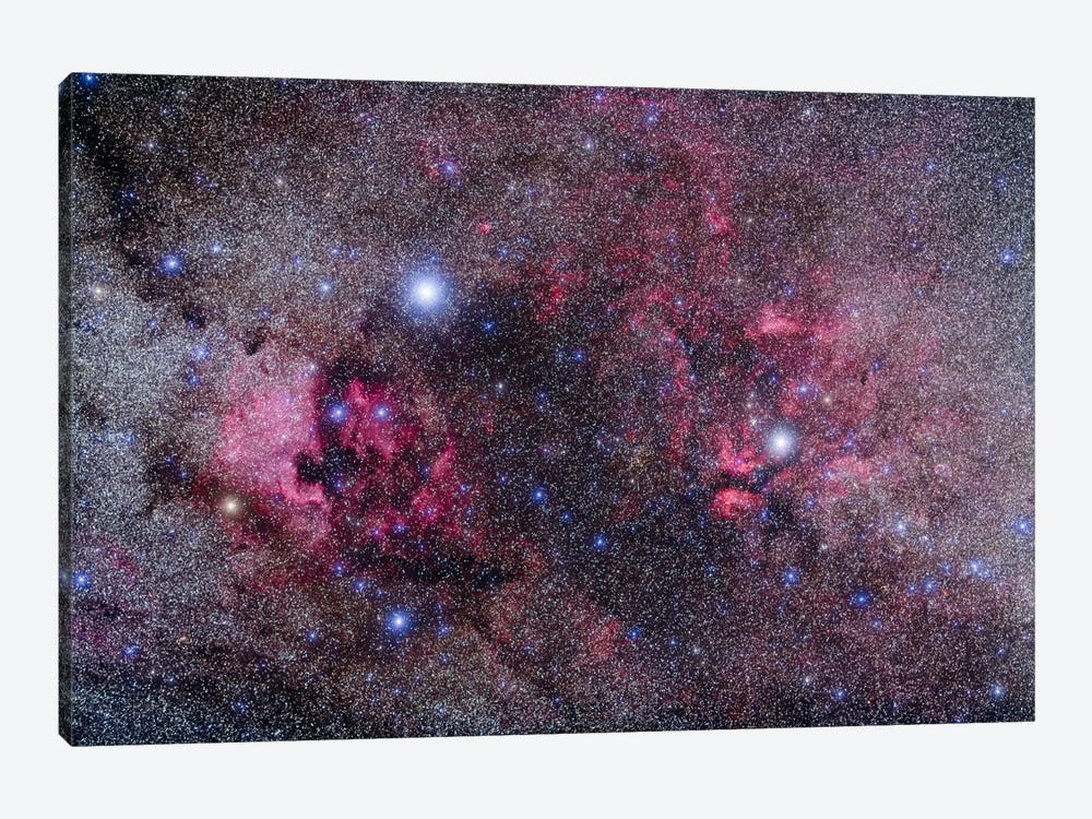 Nebulosity In Cygnus by Alan Dyer 1-piece Canvas Art Print