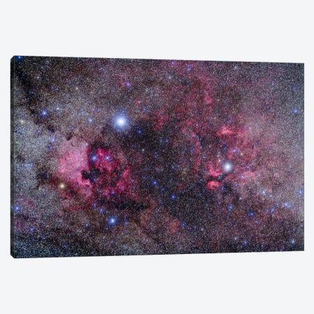 Nebulosity In Cygnus Canvas Print #TRK1169} by Alan Dyer Canvas Print
