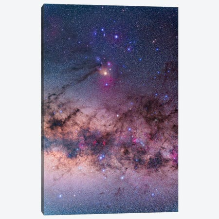 Scorpius With Parts Of Lupus And Ara Regions Of The Southern Milky Way Canvas Print #TRK1172} by Alan Dyer Canvas Art