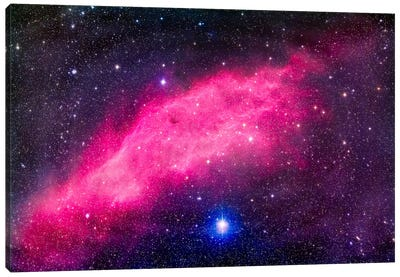 The California Nebula Canvas Art Print