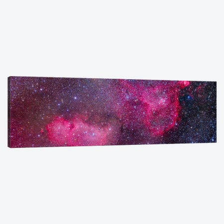 The Heart And Soul Nebulae In The Constellation Cassiopeia Canvas Print #TRK1178} by Alan Dyer Canvas Wall Art