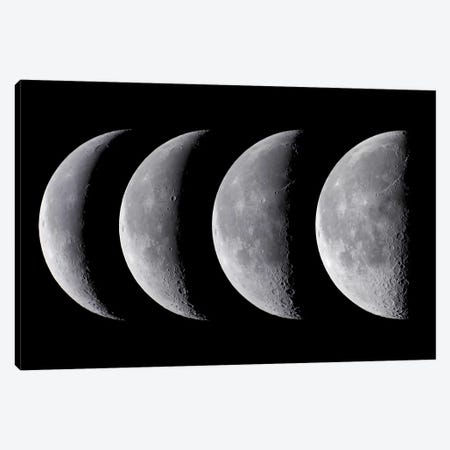 Waning Moon Series Canvas Print #TRK1185} by Alan Dyer Canvas Artwork