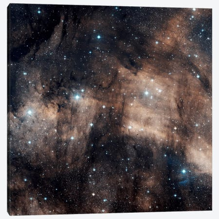 A Faint Emission Nebula Located In The Constellation Cygnus (IC 5068) Canvas Print #TRK1194} by Charles Shahar Canvas Art Print