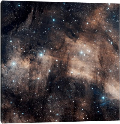 A Faint Emission Nebula Located In The Constellation Cygnus (IC 5068) Canvas Art Print