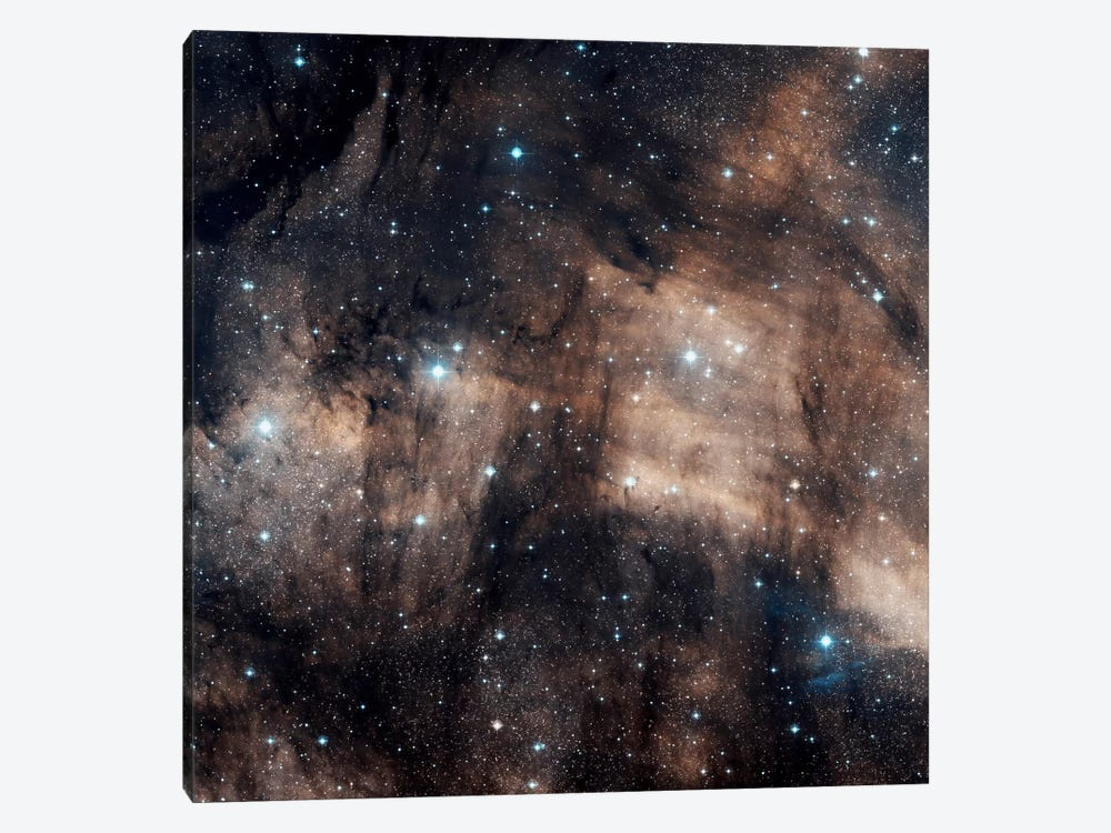 A Faint Emission Nebula Located In The Constellation Cygnus (IC 5068) by Charles Shahar 1-piece Canvas Print