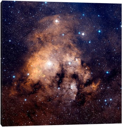 Cederblad 214, Emission Nebula Located In Northern Cepheus Canvas Art Print