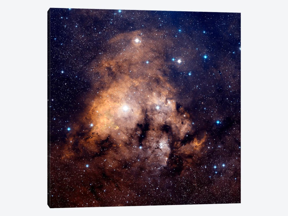 Cederblad 214, Emission Nebula Located In Northern Cepheus by Charles Shahar 1-piece Canvas Artwork
