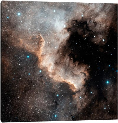 The North America Nebula (NGC 7000) Canvas Art Print