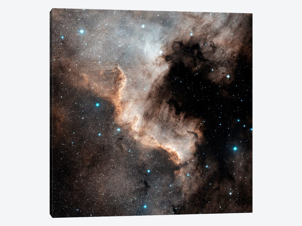 The North America Nebula (NGC 7000) 1-piece Canvas Artwork