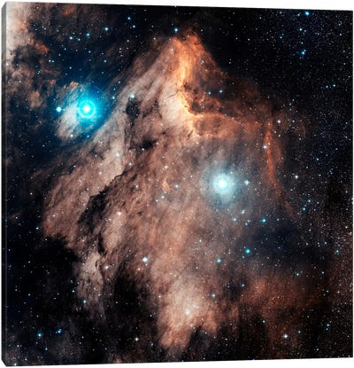 The Pelican Nebula (IC 5067 & IC 5070) Canvas Art Print
