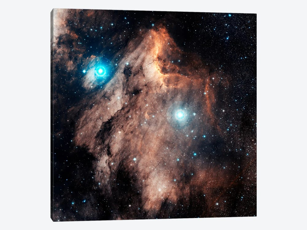 The Pelican Nebula (IC 5067 & IC 5070) by Charles Shahar 1-piece Art Print