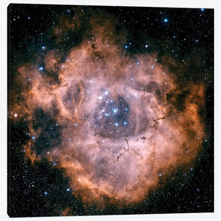 The Rosette Nebula Canvas Print #TRK1199} by Charles Shahar Canvas Artwork