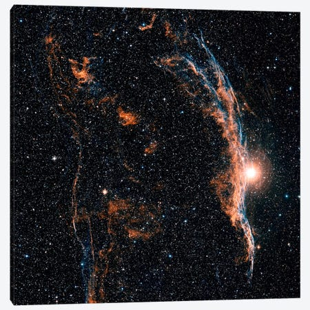 The Witch's Broom Nebula (NGC 6960) And Part Of The Veil Nebula Canvas Print #TRK1200} by Charles Shahar Canvas Art