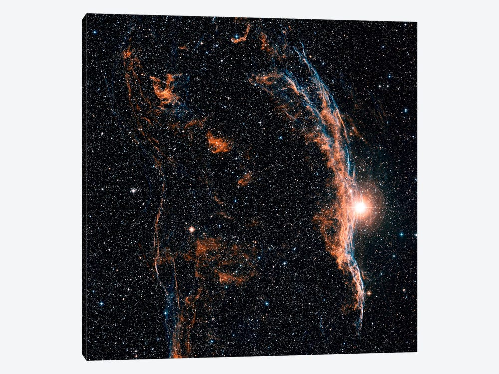 The Witch's Broom Nebula (NGC 6960) And Part Of The Veil Nebula by Charles Shahar 1-piece Canvas Wall Art