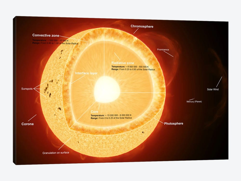Illustration Showing The Various Parts That Make Up The Sun by Fahad Sulehria 1-piece Art Print