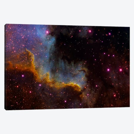 Close-Up View Of North America Nebula (NGC 7000) Canvas Print #TRK1211} by Filipe Alves Canvas Print