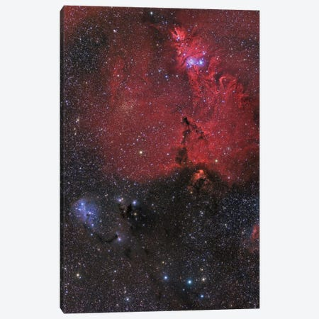 Beautiful Nebula In Monoceros Constellation Canvas Print #TRK1221} by John Davis Canvas Art