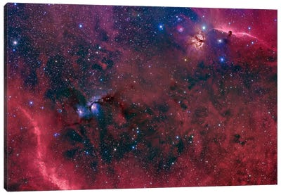 Widefield View In The Orion Constellation Canvas Art Print