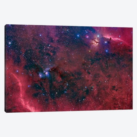 Widefield View In The Orion Constellation Canvas Print #TRK1226} by John Davis Art Print
