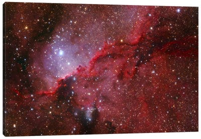 Star Forming Emission Nebula (NGC 6188) In The Constellation Ara Canvas Art Print