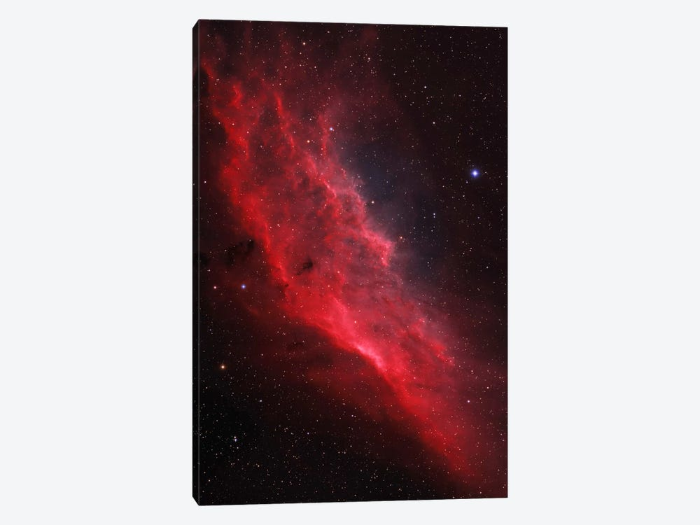 The California Nebula (NGC 1499) by Lorand Fenyes 1-piece Art Print