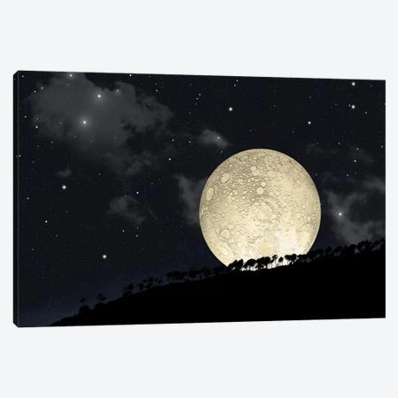 A Full Moon Rising Behind A Row Of Hilltop Trees Canvas Print #TRK1240} by Marc Ward Canvas Artwork