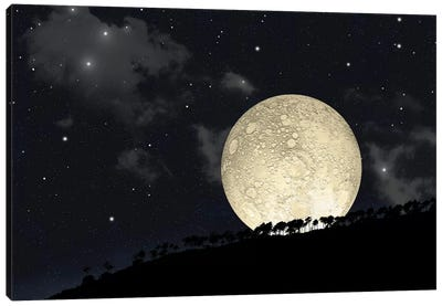A Full Moon Rising Behind A Row Of Hilltop Trees Canvas Art Print