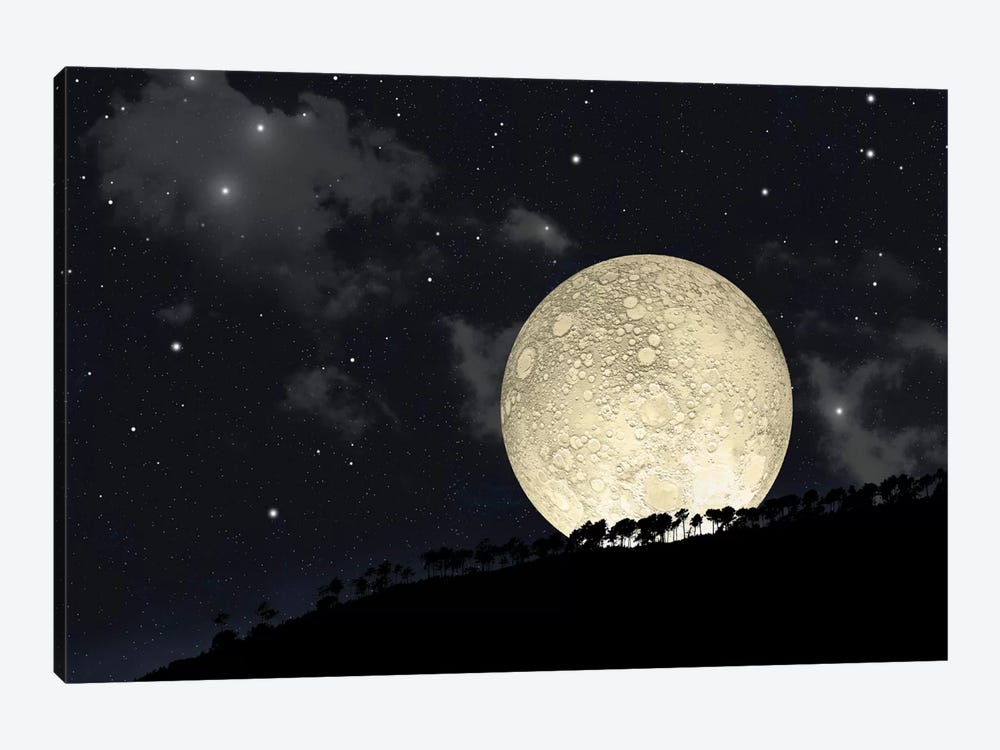 A Full Moon Rising Behind A Row Of Hilltop Trees by Marc Ward 1-piece Canvas Wall Art