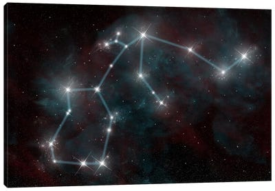 The Constellation Aquarius The Water Bearer Canvas Art Print