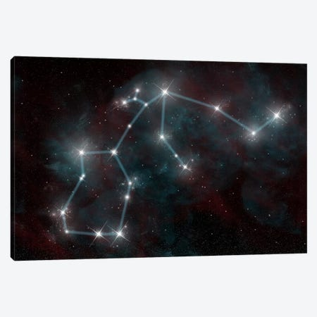 The Constellation Aquarius The Water Bearer Canvas Print #TRK1247} by Marc Ward Canvas Print