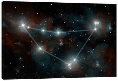 The Constellation Capricorn The Sea Goat Canvas Art Print